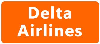 viajar en avión embarazada con Delta