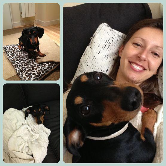 Sara y Kiba. Opiniones y experiencias sobre viajar con perro en la bodega avión.