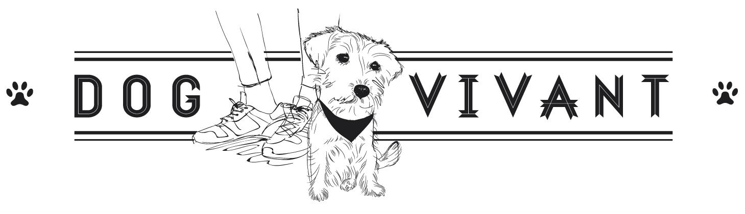 logo-dogvivant