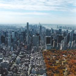 El mejor momento para viajar a Nueva York